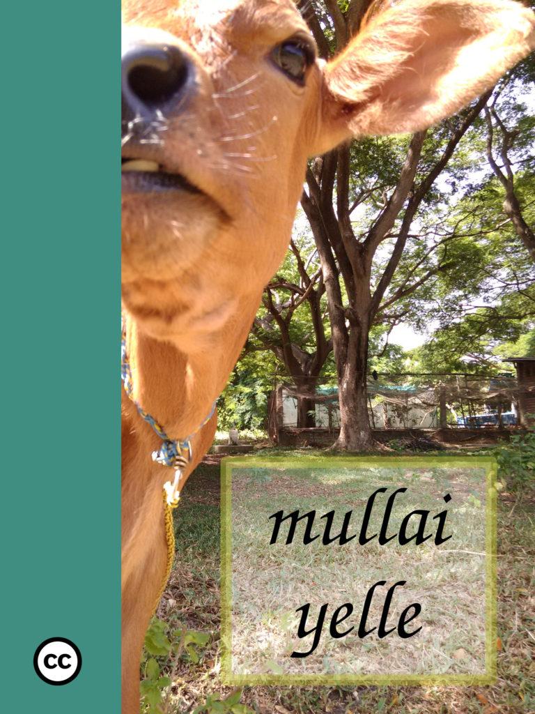 Mullai Yelle